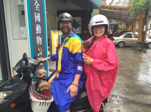 With my wife and our 3 poodles - Kobe, Lola and Mina